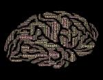 intelligence-544406_640